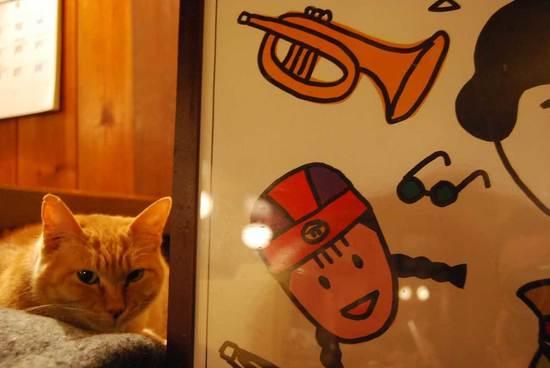 jazzcat.jpg