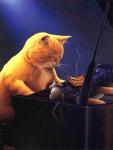 jazzcat201-thumbnail2.jpg